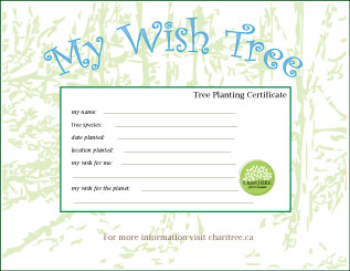 mini-Wish-Tree-certificate1